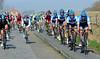Team Garmin takes the smooth road alongside some cobbles near Poperinge...