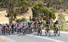Green Edge are leading the peloton in pursuit of the Katusha man, Gatis Smukulis...