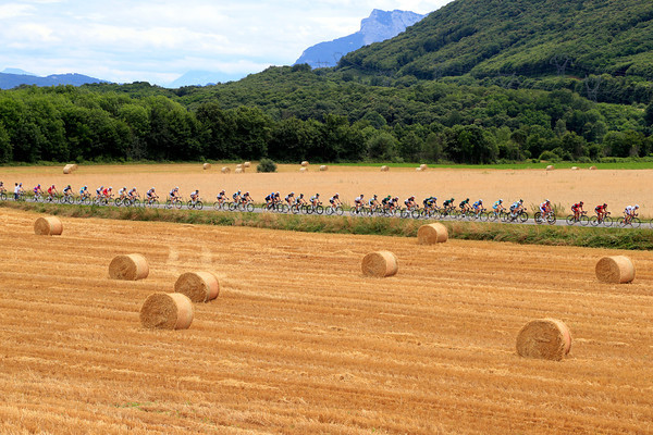 The peloton speeds past some bales of hay on its way to Annonay..!