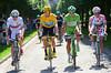 Bradley Wiggins, Peter Sagan, Thomas Voeckler and Tejay Van Garderen pose ahead of the peloton in the neutralised zone...