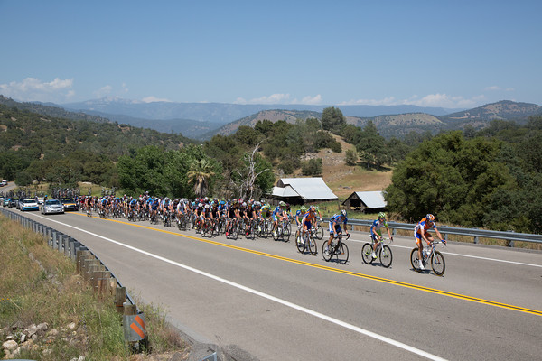 The various sprinters' teams are at the front keeping the pace high...