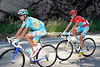 Vincenzo Nibali seems to have become a domestique for race-leader Jani Brajkovic...