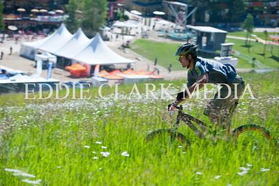 A random racer flies through a field of flowers.