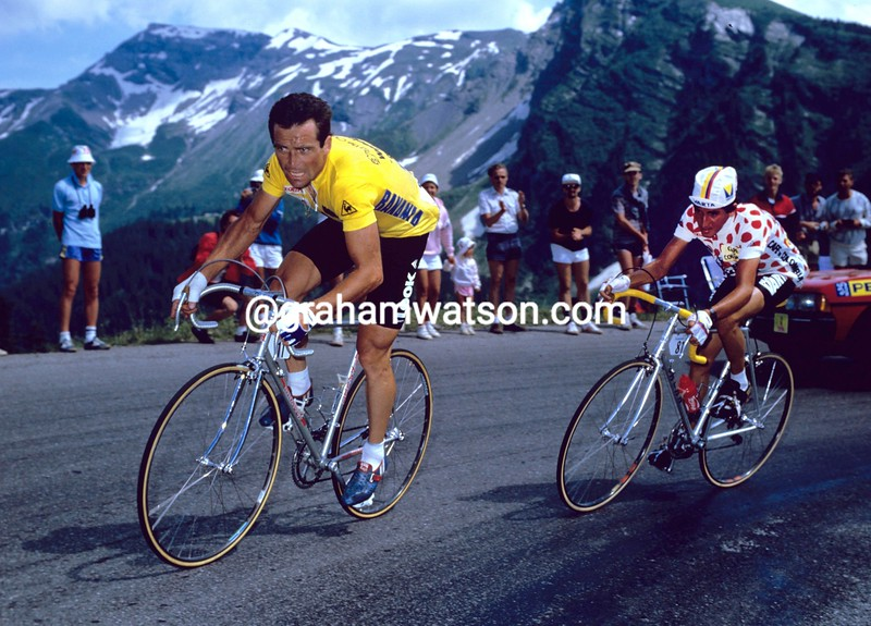 Bernard Hinault and Luis Herrera in the 1985 Tour de France