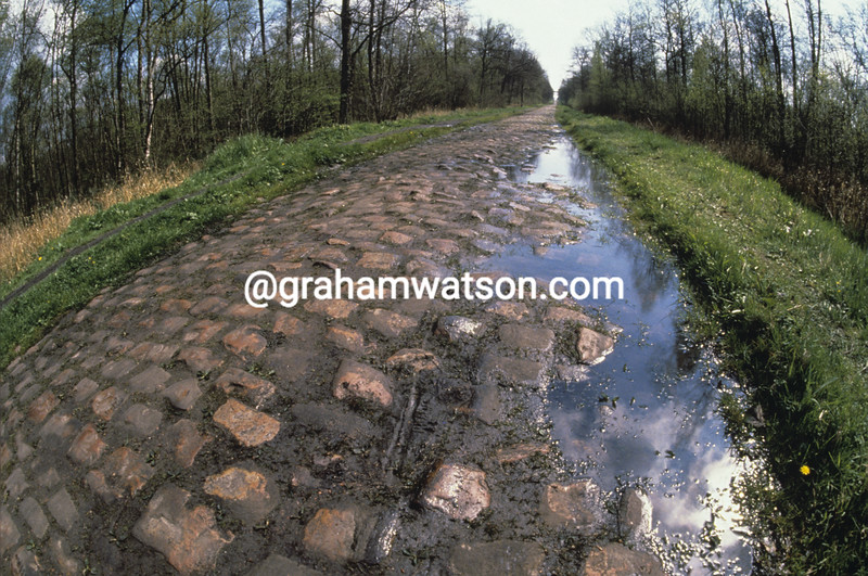 THE COBBLESTONES OF THE ARENBERG FOREST IN PARIS-ROUBAIX