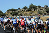 THE PELOTON ON STAGE NINE OF THE 2011 TOUR OF SPAIN