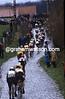 Cyclists climb in the 1990 Omloop Het Volk
