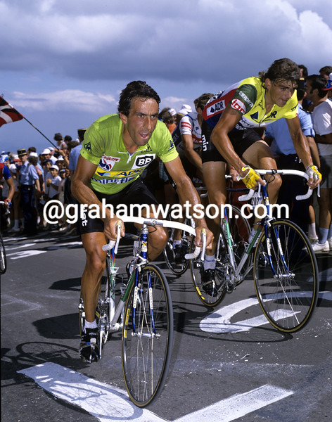 eddy planckaert in the 1986 tour de france
