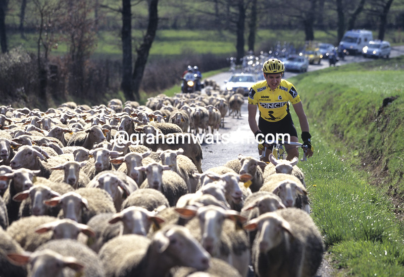 Blah... Miguel Moreno greets some un-welcome creatures in the 1995 Criterium INternational