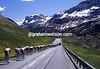 Cyclists climb in the Alps in the 1995 Giro d'Italia