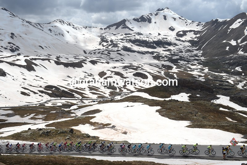 The peloton on stage twenty of the 2016 Giro d'Italia