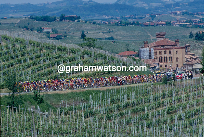 The peloton in Barolo in the 2010 Giro d'Italia