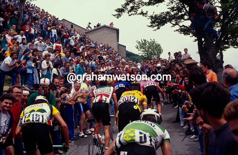 Cyclists climb on a stage of the 1989 Giro d'Italia