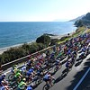 The peloton in the 2016 Milan-San Remo