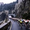 The peloton in the 1990 Milan San Remo