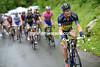 Nicholas Roche in the 2013 Tour de Suisse
