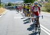 Katusha is doing all the chasing, it must be a big day in store for Joaquin Rodriguez..!