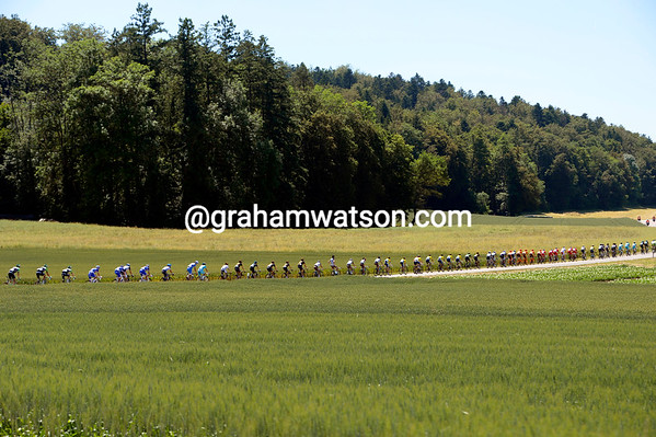 The opening kilometres are fast if not rapid, as the peloton flies across forested meadows...