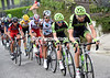 Cannnondale-Garmin have pulled off a coup - Hesjedal has Tom-Jelte Slagter up there in the escape.!
