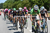 Peter Sagan is on the run again, this time at the head of a 14-man escape that's being blown along by a massive tailwind...