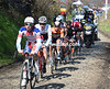 Frapporti leads the escape up the first ascent of the Oude Kwaremont...