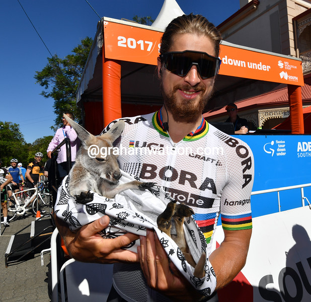 Peter Sagan greets a baby kangaroo on his trip to the 2017 Tour Down Under
