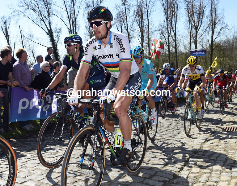 Peter Sagan in the 2016 Tour of Flanders
