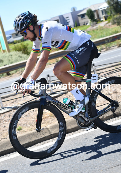Peter Sagan in the 2017 Tour Down Under