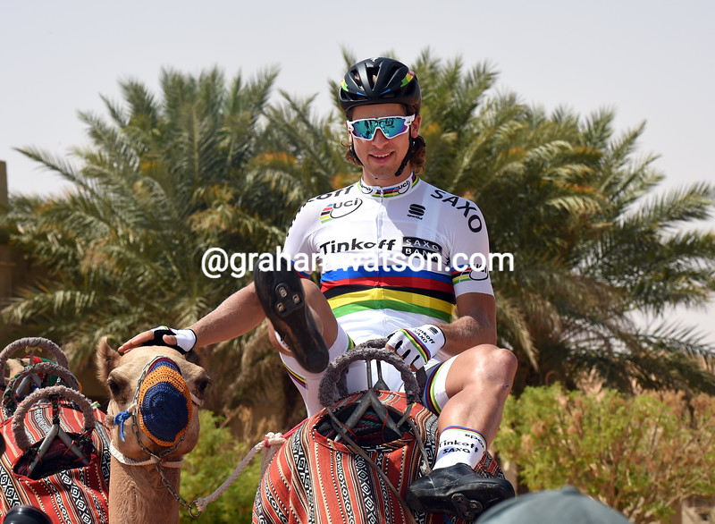 Peter Sagan on stage 1 of the 2015 Abu Dhabi Tour