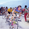 Robert Millar in the 1990 Tour de France