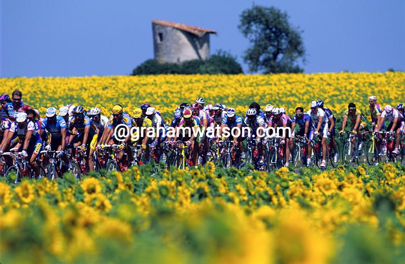 The 1988 Tour de France