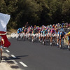 2005 Texan Fan