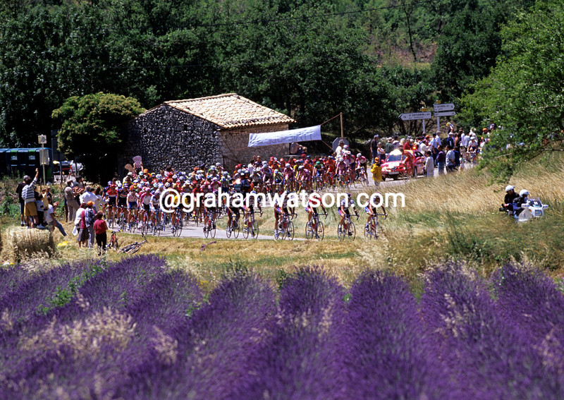 The 2000 Tour de France in Provence