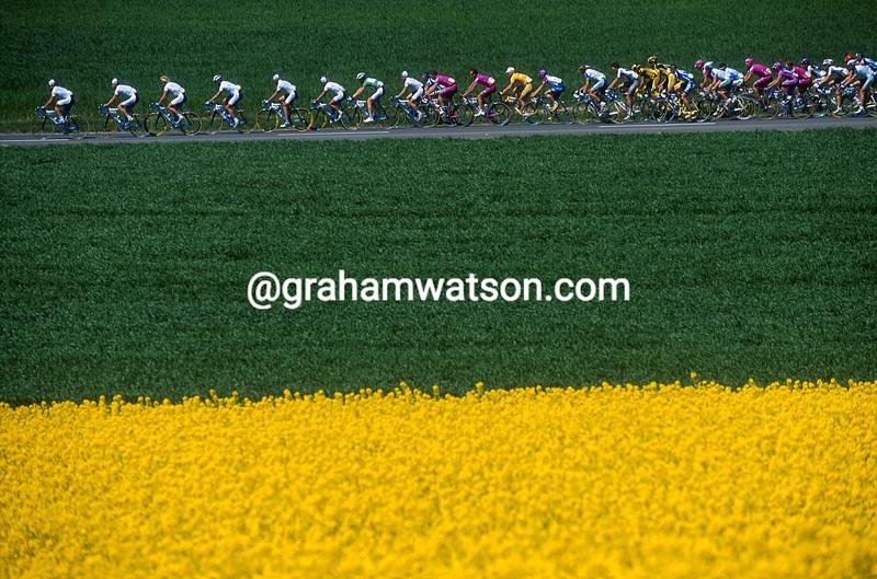 The 2002 Tour de Romandie