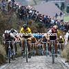 Sean Kelly, Eric Vanderaerden and Steve Bauer in the 1987 Tour of Flanders
