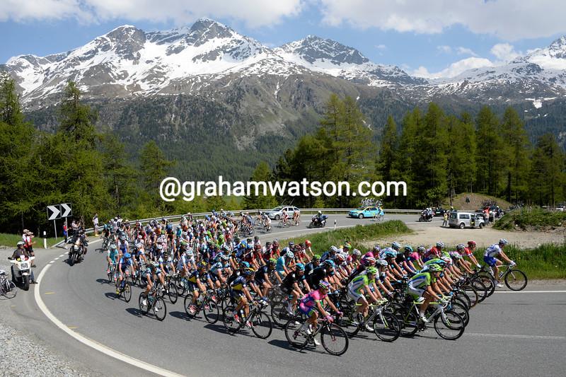 The peloton climbs the Julier Pass in the 2013 Tour de Suisse
