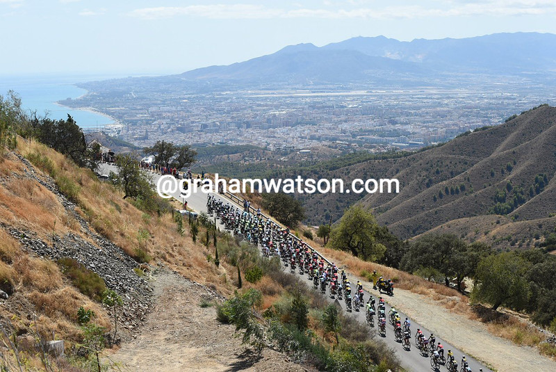 The peloton in action during Stage 3 of the 2015 Vuelta Espana