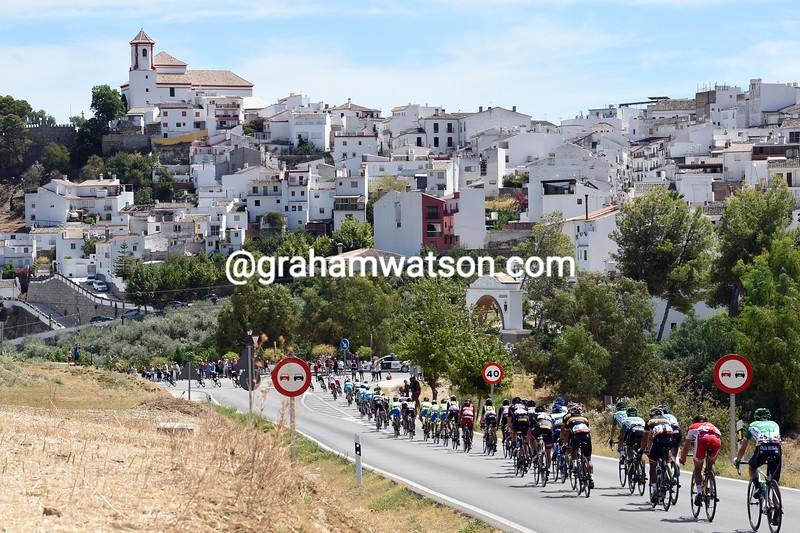 The peloton in Andalucia on stage two of the 2015 Tour of Spain