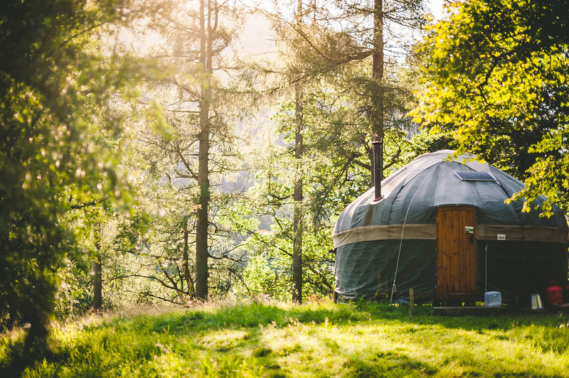 Forest Yurt.