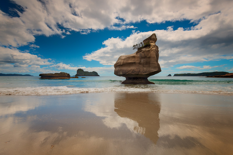 Mares Leg Cove (NZ)