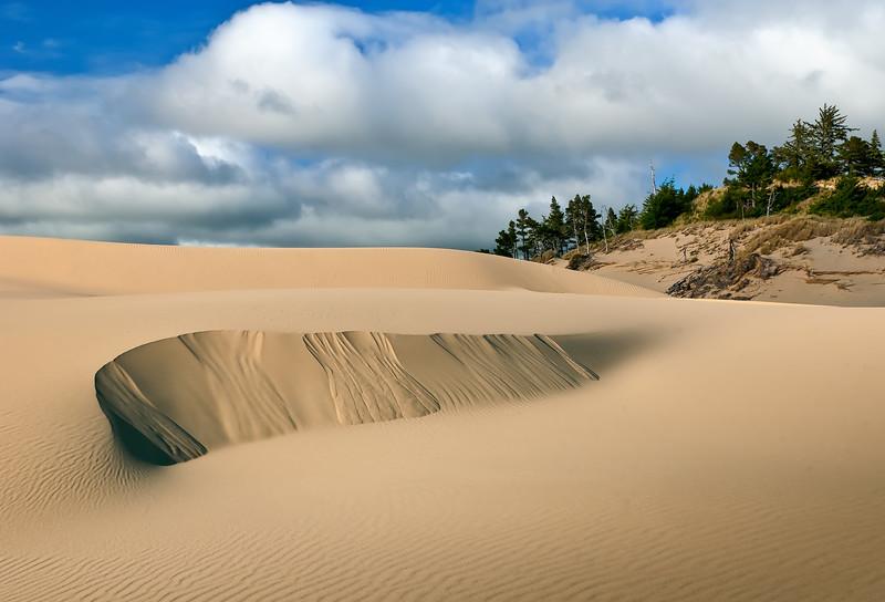 Oregon Dunes #2