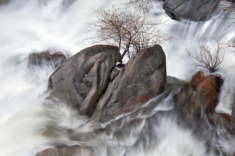 Tamarack Creek in Spring