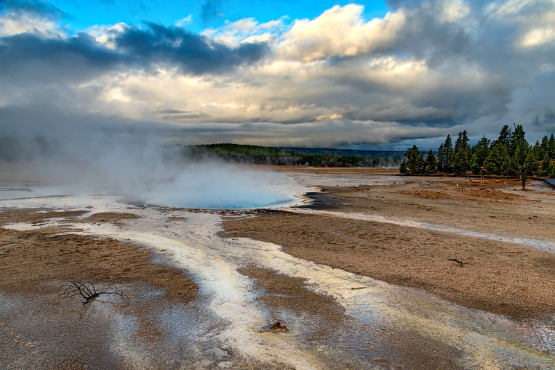Yellowstone's Lower Basin
