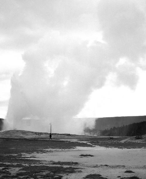 Man walking in front of a geyser. Yellowstone, 1931.