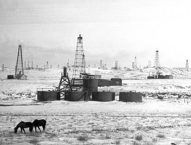 Horses grazing near a field of oil derricks. Colorado, early 1930s.