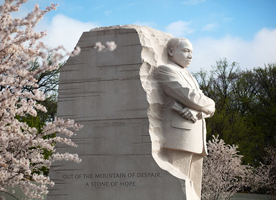 Martin Luther King, Jr memorial with cherry blossoms