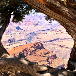 The Grand Canyon Framed