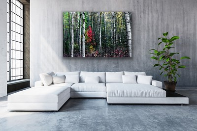 'Nature's Canvas' Canvas Wrap or Float Mount Metal Print