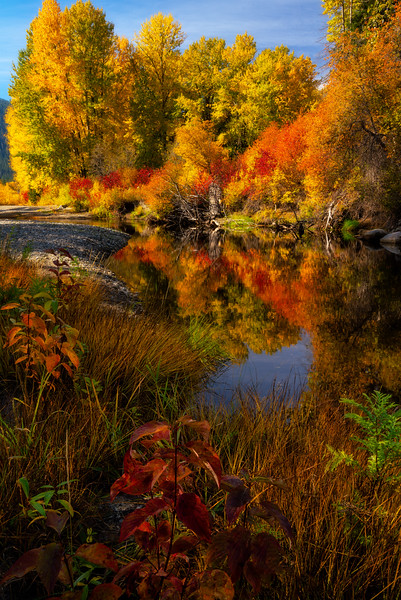 Autumn Road Side Attraction