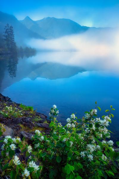 Lake Crescent Misty Morning